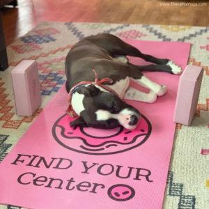 down dog on yoga mat TheraPlaYoga