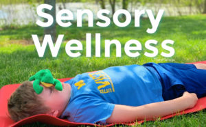 TheraPlaYoga Sensory Wellness